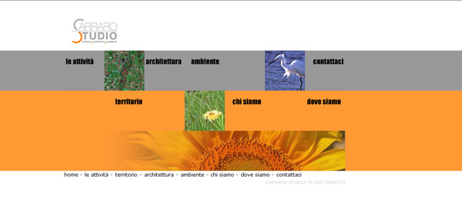 sito web carraro studio