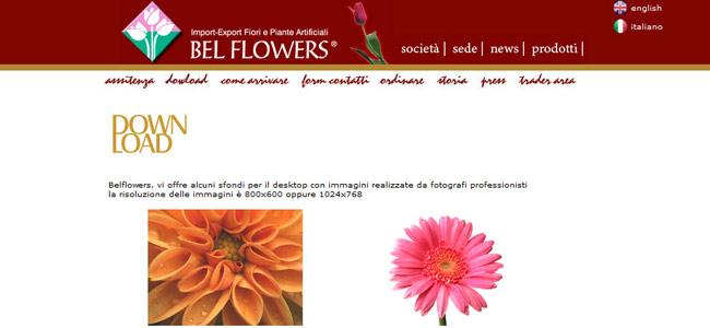 sito import export fiori artificiali